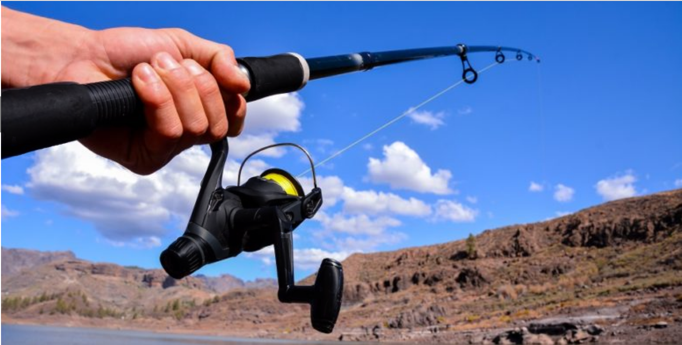 Best surf fishing reels....